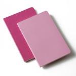 Moleskine Volant Pocket Ruled Notebook (Set of 2) (3.5 x 5.5)